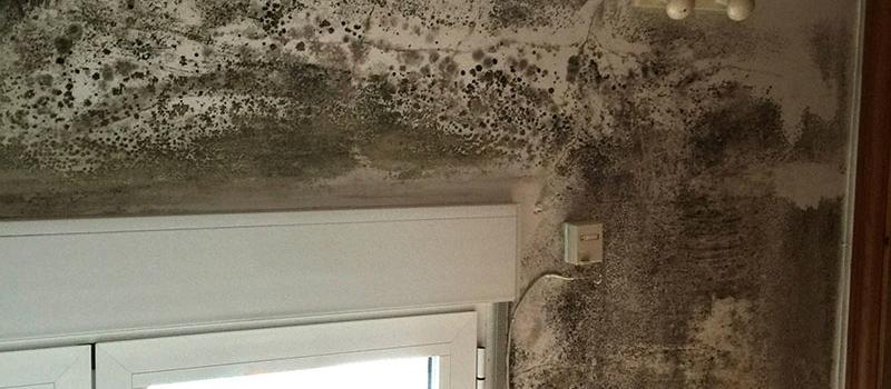 Durante los meses de invierno se multiplican los problemas de humedades en el hogar